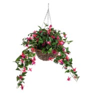 Hanging Basket With Fuchsia Pink Flowers