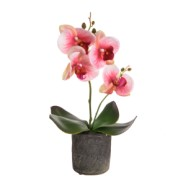 Artificial Light Pink Orchid With Pot