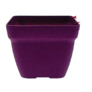 Garden Planter Euro Pot Square 23cm (Grape)