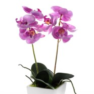Artificial Flower Orchid Mini Lilac Pink With Pot