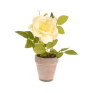 Artificial Cream Rose Complete With Pot