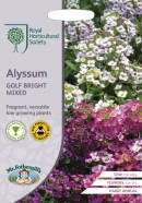 Alyssum Golf Bright Mixed Seeds