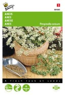 Anise Herb Seeds