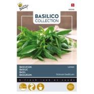 Basil Lemon Herb Seed