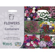 Flowers For Pots Collection Seeds
