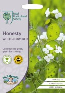 Honesty White Flowered Seeds