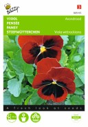 Pansy Swiss Red Seeds