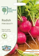 Radish Pink Beauty Seeds