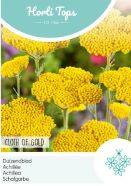 Achillea Cloth Of Gold Seeds