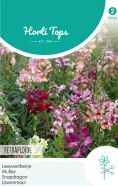 Antirrhinum Tetraploid Mixed Seeds