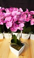 Artificial Lilac Pink Orchid With Pot