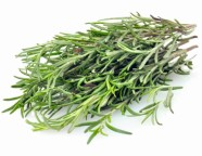 Rosemary Herb Seed